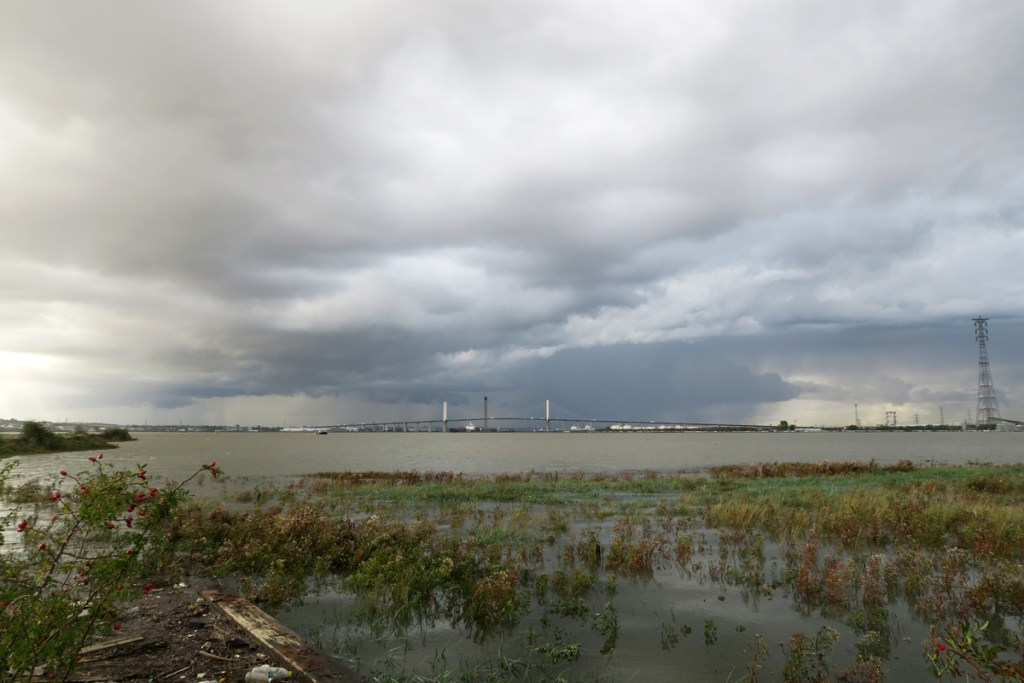 Brownfield site at Swanscombe Peninsula looking upstream during a very high tide