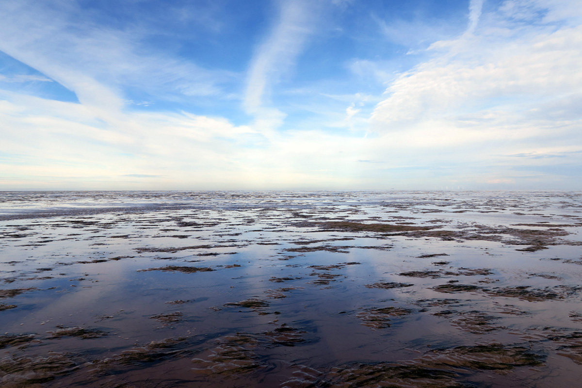 A flat landscape of mud, sand and water stretches as far as the eye can see, beneath a blue sky