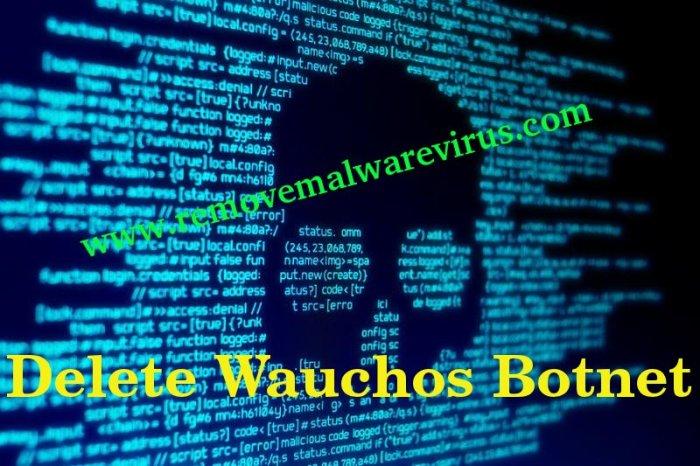 Löschen Sie Wauchos Botnet