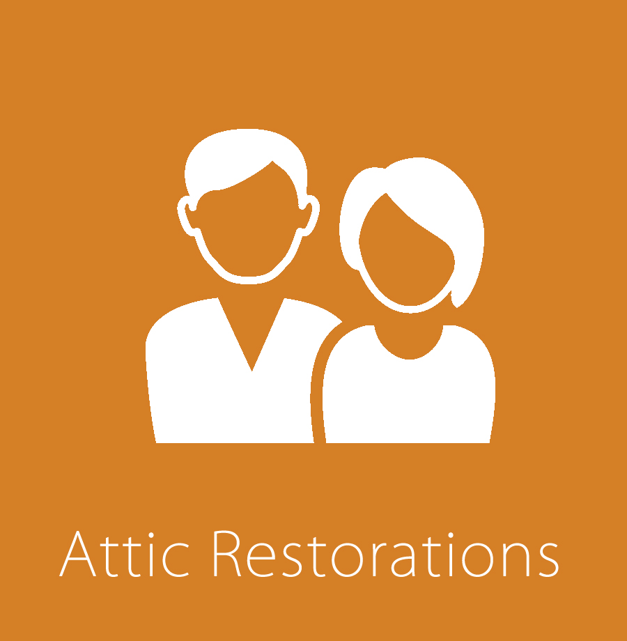 Attic Restorations & Repair from Pest & Wild Animal Damage