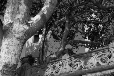 Villa del Balbianello, Como. 19 settembre 2014 - Nikon D810, 70mm (24-70 ƒ/2.8) 1/1250sec ƒ/9 ISO 800