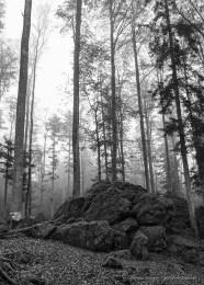 Bayerischer Wald 2015 - Canon PowerShot G1 X, 19mm (15.1-60.4mm) 1/320 ƒ/5.6 ISO 6400
