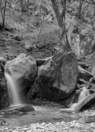 Monte Cornizzolo vicino a San Pietro al Monte. Nikon D810, 27mm (24.0-70.0mm ƒ/2.8) 0.8sec ƒ/16 ISO 64