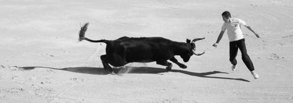 Course camarguese, Saintes Maries de la Mer. 27 settembre 2014 - Nikon D810, 80mm (80-400 ƒ/4.5-5.6) 1/1250sec ƒ/13 ISO 1000