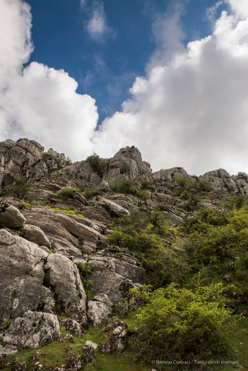 Torcal de Antequera, Andalucia April 2015 - Nikon D810, 24mm (24-70.0mm ƒ/2.8) 1/125 ƒ/8 ISO 64