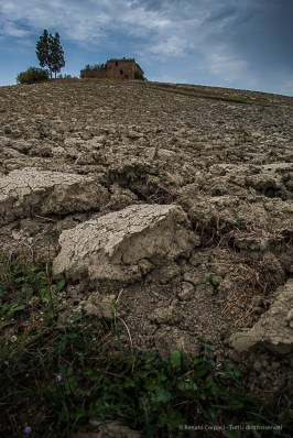 The soil at Montalcino: granitic, volcanic, galestro, schist and clay. Nikon D810, 24mm (24.0mm ƒ/1.4) 1/400 ƒ/11 ISO 800