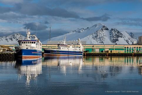 The fishing port of Höfn. Nikon D810, 85 mm (85.0 mm ƒ/1.4) 1/1250 ƒ/5.6 ISO 64