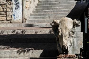 """Stairways toward the top of the Teatro Romano. Nikon D810 120 mm (24-120.0 mm ƒ/4) 1/200"""" ƒ/8 ISO 100"""