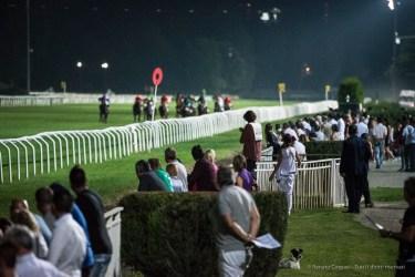 "Ippodromo di San Siro. 3rd race for 2 year old horses. Nikon D750, 400 mm (80-400 mm ƒ/4.5-5.6) 1/1000"" ƒ/5.6 ISO 12800"