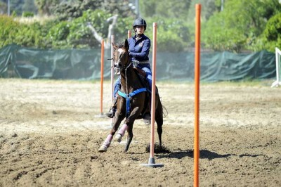 Equitazione - Pole Bending al Golden Horse