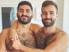bear gays