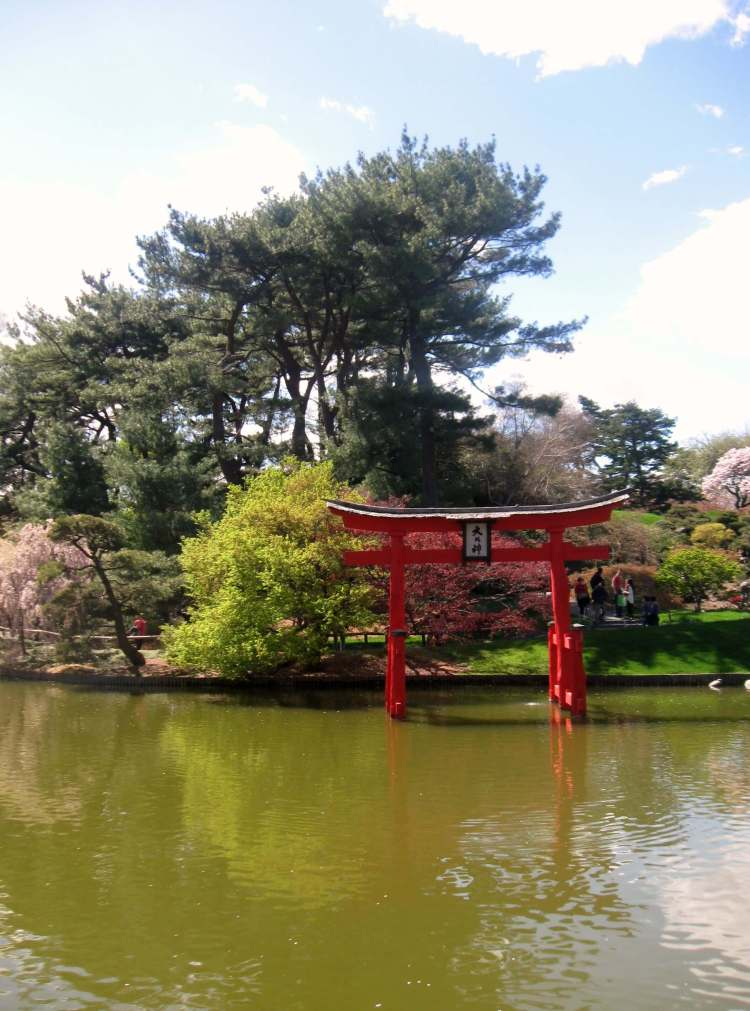 Japanese Hill and Pond Garden at the Brooklyn Botanic Garden