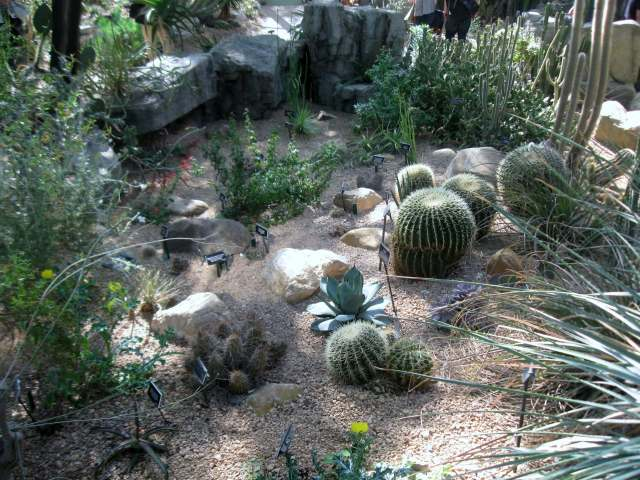 Desert Pavilion at the Brooklyn Botanic Garde