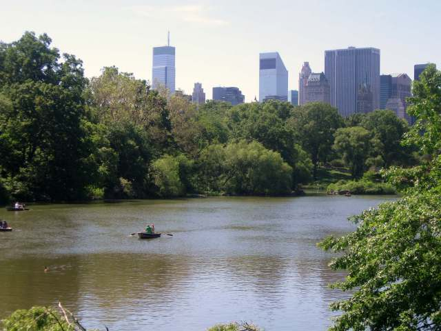 Pond at Central Park NYC