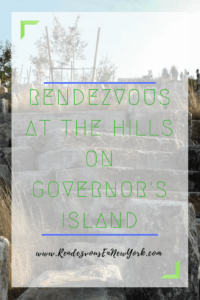 rendezvous at the Hills on Governor's island