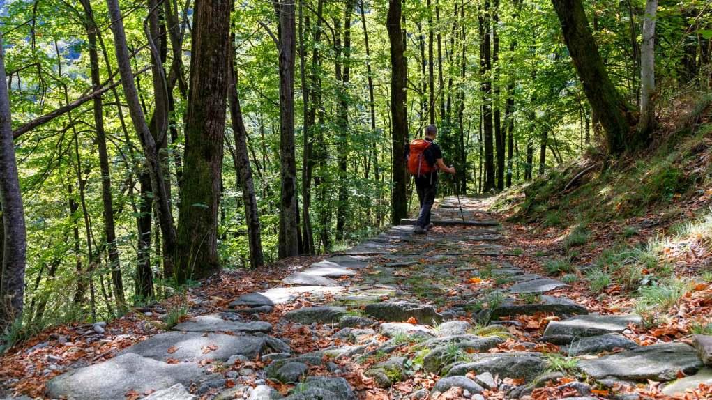 Schöner Steinplattenweg