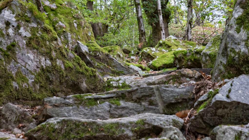 Wunderbarer Weg über Steinplatten