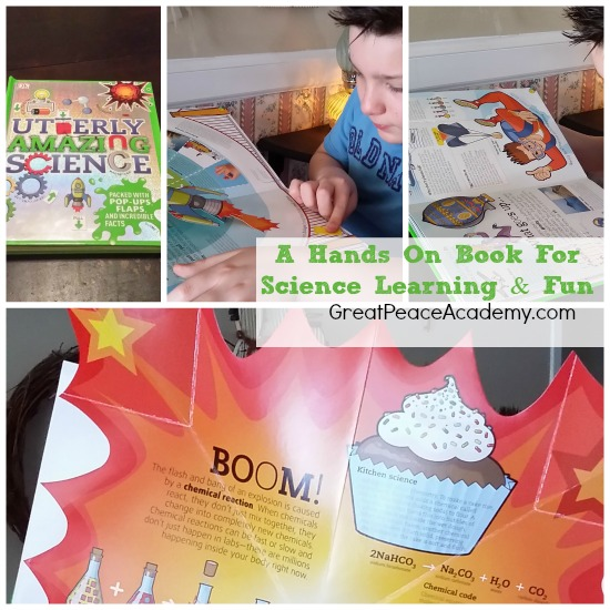 4 Books: Utterly Amazing Science from DK Books. | Great Peace Academy.com