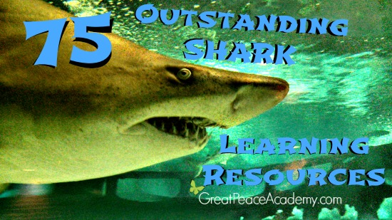75 Shark Learning Resources that will make you squeal! #sharkweek at Great Peace Academy