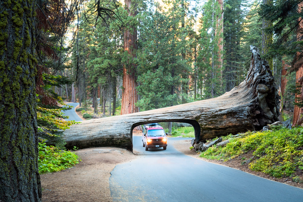 America's National Parks - Ranked Best to Worst - Sequoia National Park