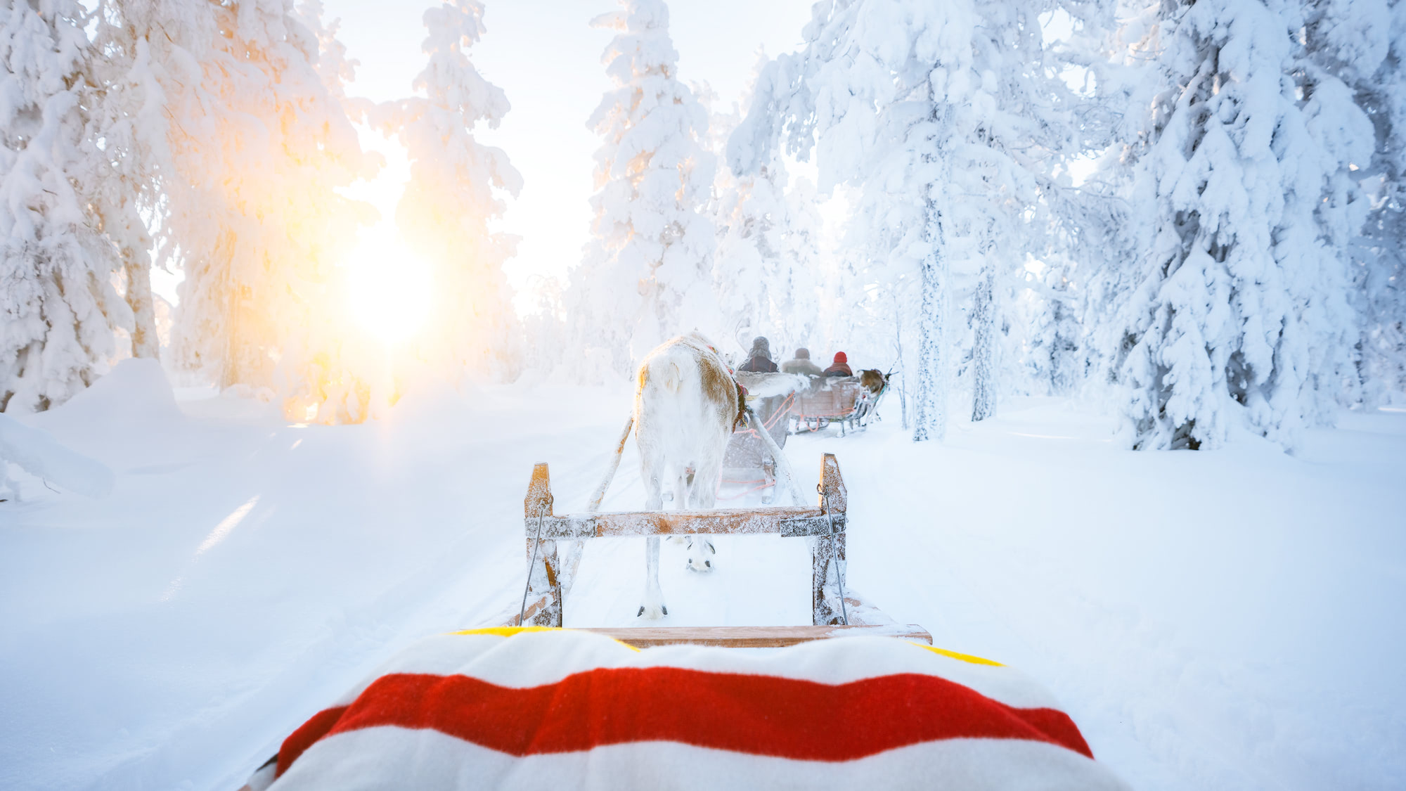 3d01d89fade The Ultimate Guide to Visiting Lapland