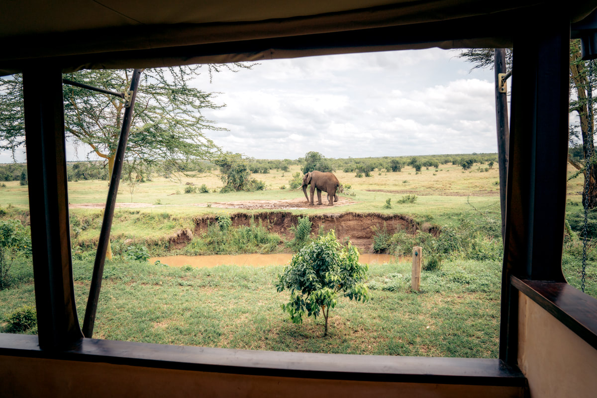 Ultimate Safari Adventure at Ol Pejeta Conservancy Kenya Asilia Mess Tent
