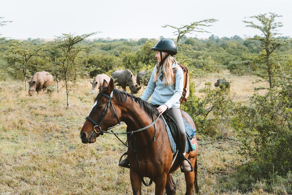 Ultimate Safari Adventure at Ol Pejeta Conservancy Kenya Horse Riding