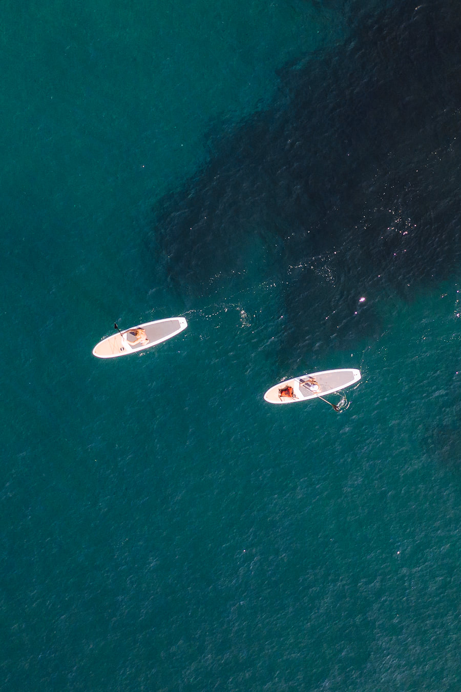 Orange County Travel Guide Everything You Need to Know- Laguna Beach SUP Aerial 2