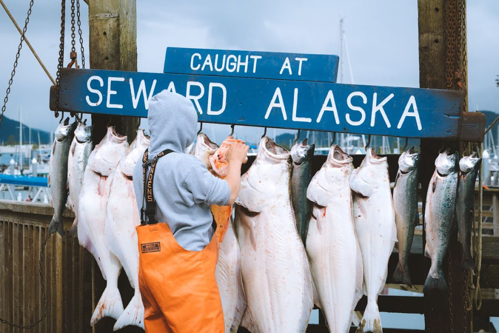 The Ultimate Guide to Exploring Kenai Fjords National Park - Fishing in Seward Alaska