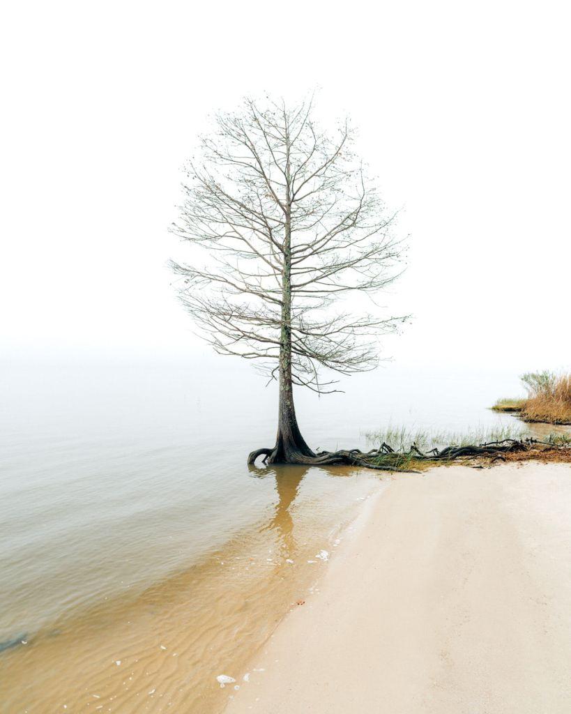 Williamsburg Virginia Guide and Itinerary - York River State Park Beach Walk