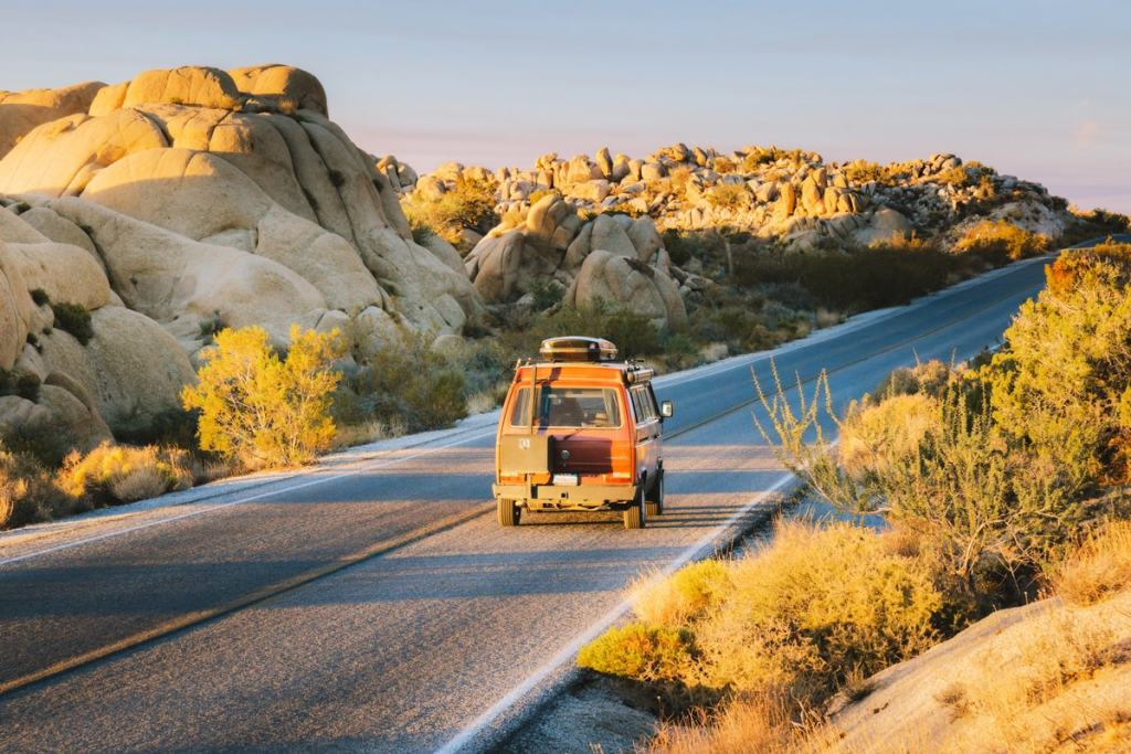 Best National Parks to Visit in Spring - Joshua Tree National Park Spring Guide