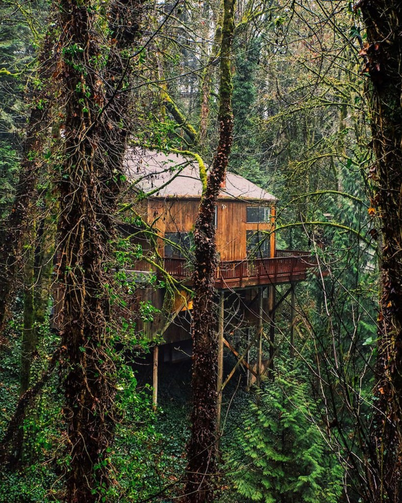 Portland Oregon Treehouses to Rent - Wald House PDX