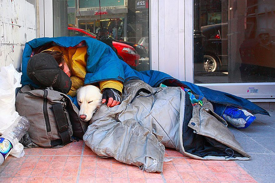homeless-with-dog