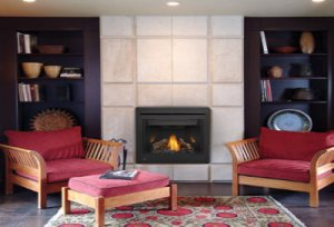 View all Fireplace Options