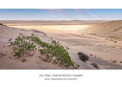 20170501-Solitaire-Namibia-2934