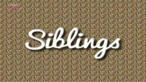 Is There Siblings Series 3? Cancelled Or Renewed?