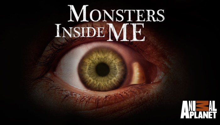Monsters Inside Me Season 8 Cancelled Or Renewed?