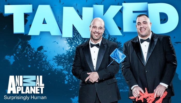 Tanked Season 11 On Animal Planet: Cancelled Or Renewed? (Release Date)