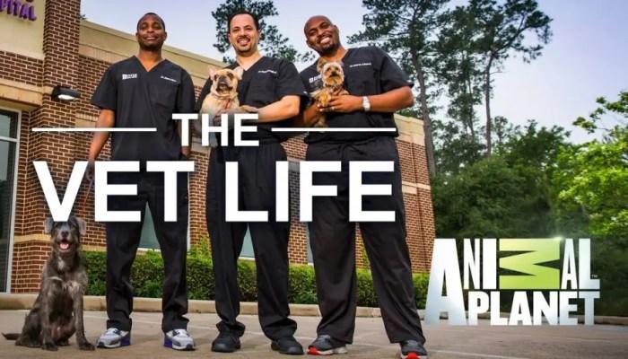The Vet Life Season 3 on Animal Planet
