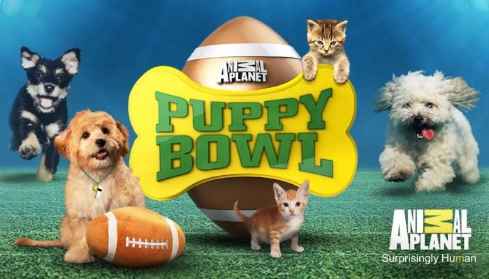 Puppy Bowl 2018