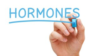 5 interesting facts about hormones
