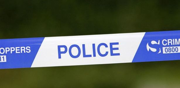 Police appeal for help after car fire in Glenburn