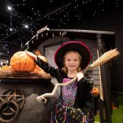 Get into the spirit of Halloween with the Braehead Witch's Garden
