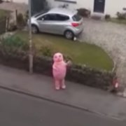 Video: Mr Blobby spotted out for exercise in Kilbarchan