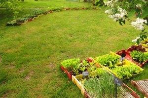 Plantgoeddag @ De Ommuurde Tuin | Renkum | Gelderland | Nederland