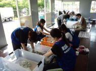 Un grand nombre de maisons ont été détruites par le tsunami et le séisme. Beaucoup de bons souvenirs familiaux ont été perdus.