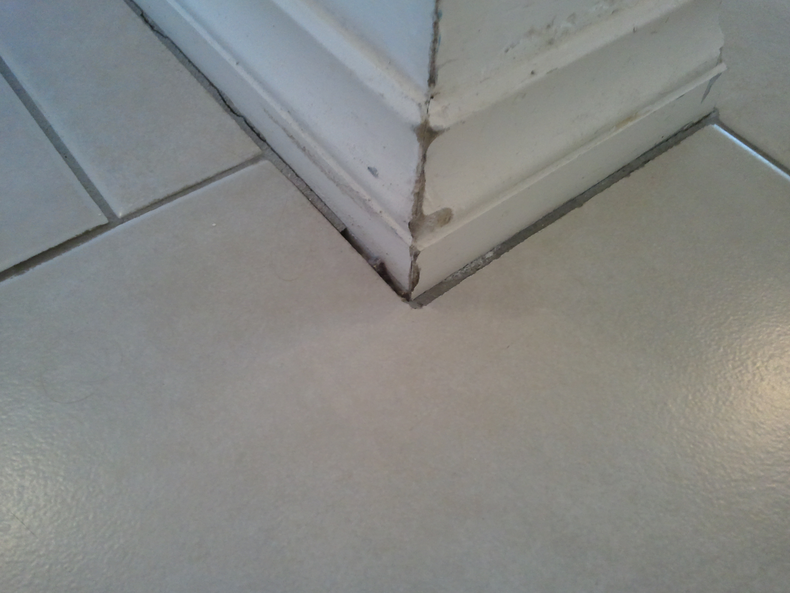 floor tile or my baseboard trim first