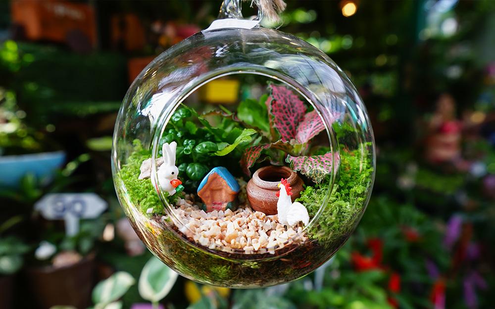jardin miniature original