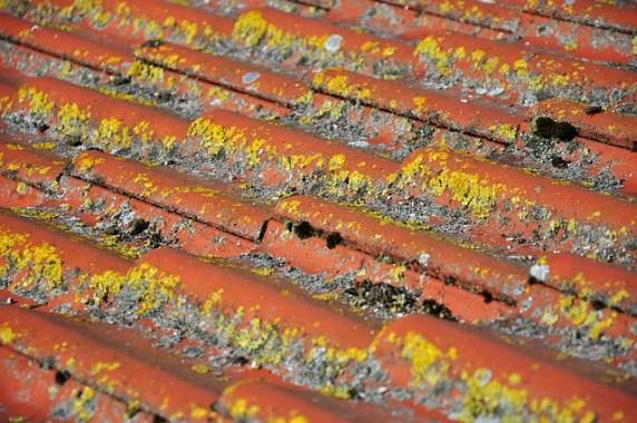 L'essentiel sur le nettoyage de la toiture
