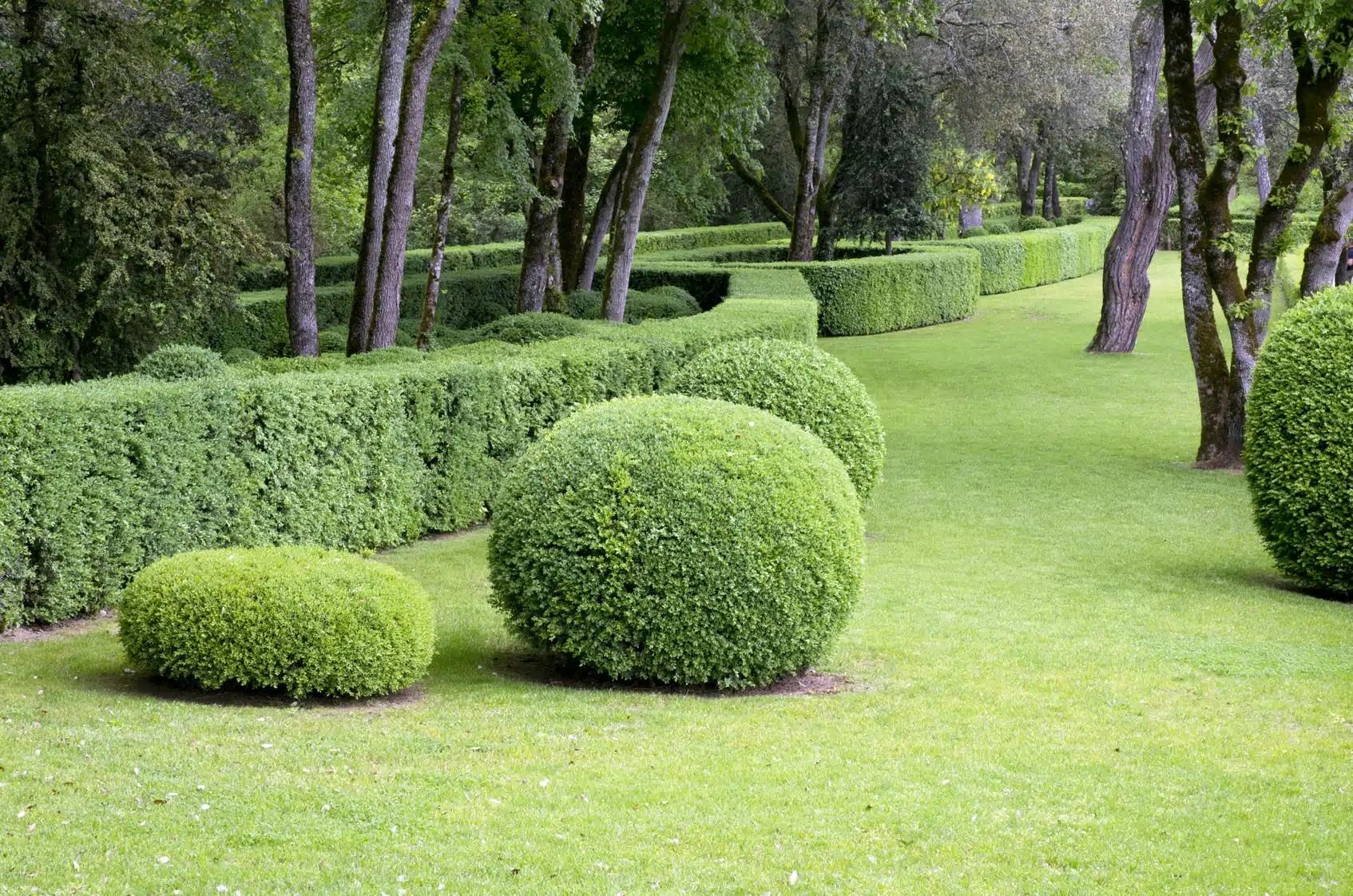 Guide Eclairage Jardin